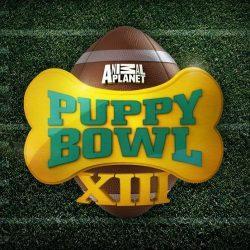 large.5897e6936a1b5_Puppy-Bowl-Live-Stream-2017-250x250020517.jpg